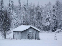 shed-in-snow