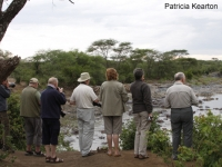 Clients at the Hippo Pool copy
